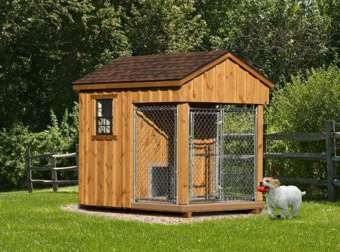 custom dog kennels outdoor